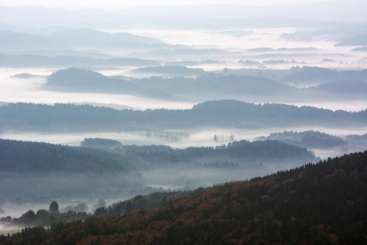 Nebelfelder im Zittauer Gebirge